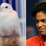 My Celebrity Life – Princes dove Divinity was one of his OG crew Picture PaisleyPark Twitter