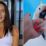 My Celebrity Life – Married At First Sights Ines Basic was bitten by cockatoo Picture InstagramInes Basic