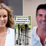 My Celebrity Life – Amanda Holden got a very cheeky gift from Simon Cowell Pictures GettyRexAmanda HoldenInstagram