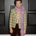 My Celebrity Life – Harry Styles at THE 63rd ANNUAL GRAMMY® AWARDS Photo by Francis SpeckerCBS via Getty Images