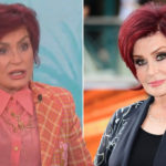 My Celebrity Life – Sharon and Sheryls heated exchange has sparked internal review Picture CBSPA