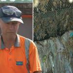 My Celebrity Life – Andy a technician at a sewage plant gave a grim look at his job Picture BBC